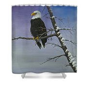 Symbol Of Freedom Shower Curtain