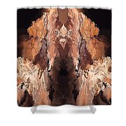 Symmetries - Marucii Shower Curtain