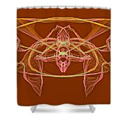 Symmetry Art 2 Shower Curtain