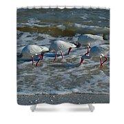 Synchronized Beach Combing Shower Curtain