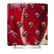 Syrup Flower 1 A Shower Curtain