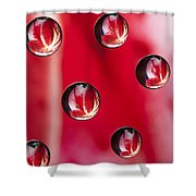 Syrup Flower 1 B Shower Curtain