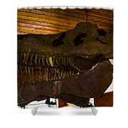T Rex Head Shower Curtain