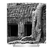 Ta Prohm Roots And Stone 02 Shower Curtain