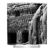 Ta Prohm Roots And Stone 05 Shower Curtain