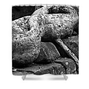 Ta Prohm Roots And Stone 06 Shower Curtain