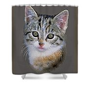 Tabby  Kitten An Original Painting For Sale Shower Curtain