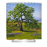 Table Mountain Shower Curtain