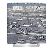 Tabular Icebergs Among Broken Fast Ice Shower Curtain