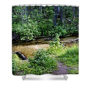 Tacoma Creek 1 Shower Curtain