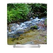 Tacoma Creek 2 Shower Curtain