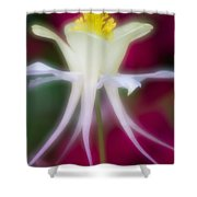 Tadpole Flower Shower Curtain