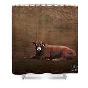 Tag Number 1121 Shower Curtain