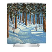 Tahoe Forest In Winter Shower Curtain