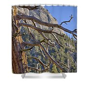 Tahquitz And The Pine Shower Curtain