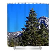 Tahquitz Rock - Lily Rock Shower Curtain