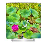 Tail-end Of The Wet Season Shower Curtain