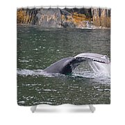 Tail Falls Shower Curtain