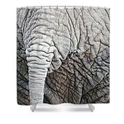 Tail Of African Elephant Shower Curtain