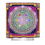 Tajha 2012 Shower Curtain