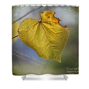 Take Another Little Piece Of My Heart Shower Curtain