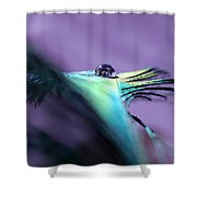 Take Flight II Shower Curtain