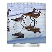 Take It In Stride Shower Curtain