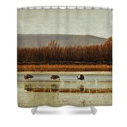 Takeoff Of The Cranes Shower Curtain