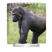 Taking A Stand Shower Curtain