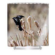 Taking Flight Shower Curtain