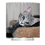 Taking It Easy Shower Curtain