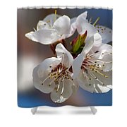 Taking My Breath Away - Featured 3 Shower Curtain