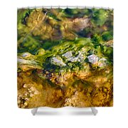 Taking The Beach Hot Springs Shower Curtain