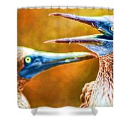 Talking Birds Shower Curtain