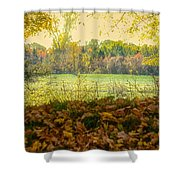 Chillin Cows Shower Curtain