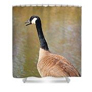 Talking Goose Shower Curtain