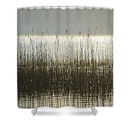 Tall Grass On Lough Eske - Donegal Ireland Shower Curtain