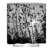 Tall Grass Shower Curtain