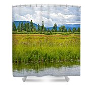 Tall Grasses In Swan Lake In Grand Teton National Park-wyoming Shower Curtain