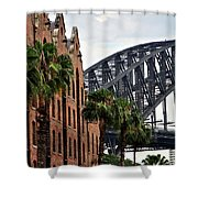 Tall Palms Before Beautiful Architecture Shower Curtain