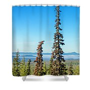 Tall Pine Trees And Hilly Background Shower Curtain