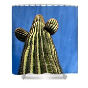 Tall Saguaro Cactus Shower Curtain