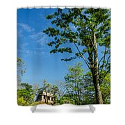 Tall Tree And Temple Shower Curtain