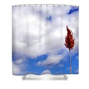 Tall Trunks Shower Curtain