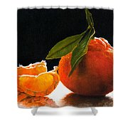Tangelo Slices Shower Curtain