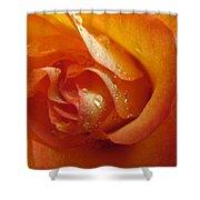 Tangerine Beauty Shower Curtain