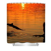 Tangerine Moonlight Shower Curtain by Karen Wiles