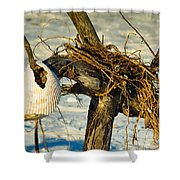 Tangled Driftwood Shower Curtain
