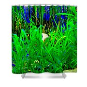Tangled Garden On The Canal Canadian Art Montreal Landscapes Lachine Quebec Scenes Carole Spandau  Shower Curtain