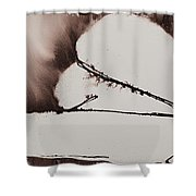 More Than No. 1020 Shower Curtain